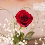 Rote Rose mit Schleierkraut und herzförmig gebundenen Gräsern, Hochzeitsdekoration
