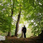 Hochzeitspaar von hinten unter hohen alten Bäumen, der Schleier weht im Wind